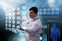 The male doctor studing x-ray image of mri scan Royalty Free Stock Photo