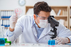 The male doctor working in the lab on virus vaccine Stock Photo