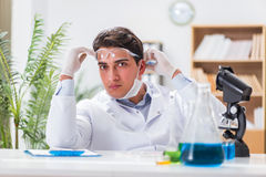 The male doctor working in the lab on virus vaccine Stock Photography