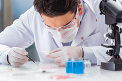 The male doctor working in the lab on virus vaccine Royalty Free Stock Images