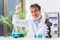 The male doctor working in the lab on virus vaccine Royalty Free Stock Photography