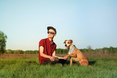 Male dog owner and trained staffordshire terrier enjoy sunset at stock images
