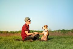 Male dog owner and trained staffordshire terrier giving paw at l. Awn. Handsome young man in casual clothes and his puppy in bandana resting on green grass in royalty free stock photography