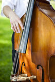 Male double bass player. Stock Photography