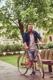 Male dressed in casual clothes, walking with a retro bicycle in a city park. Male dressed in casual clothes, walking with a retro bicycle in a park stock image