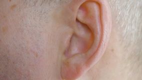 Male ear close up. Close up view man moving his ear, body part. Medicine and health concept stock video footage