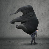 Male entrepreneur carrying elephant Stock Photo