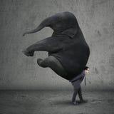 Male entrepreneur carrying elephant Stock Photo