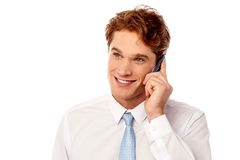 Male executive communicating with client Stock Images
