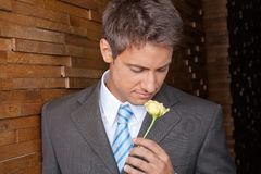 Male Executive Holding Yellow Rose Royalty Free Stock Photo