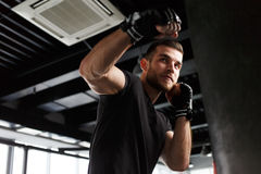 Male exercising in boxing gloves Stock Photography