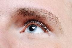 Male eye Royalty Free Stock Images