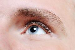 Male eye. Macro portrait male eye close-up Royalty Free Stock Images