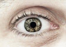 Male eye macro closeup. Macro closeup of male eye with eyelid eyelashes and interesting iris pattern stock photo