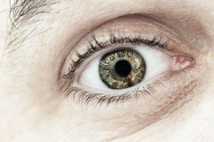 Male eye macro closeup Stock Photography