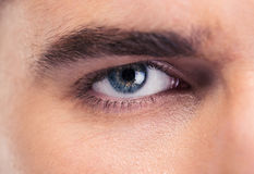 Male eyes. Closeup portrait of male eyes Royalty Free Stock Photography