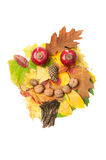 Male face made of autumn fall leaves and fall decorations Stock Photography