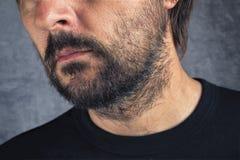 Male facial hair Royalty Free Stock Photos