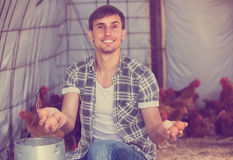 Male farmer picking fresh eggs in coop Royalty Free Stock Photos
