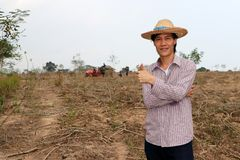 Male farmer standing and thumbs up in the cassava farm royalty free stock image