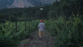 A male farmer uses a drone for farming. Monitors its grape fields. New technologies in agriculture