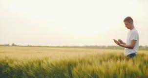 Male Farmer using digital tablet in field. stock video