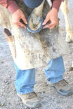 Male farrier. Male farrier working on a horseshoe on a ranch Royalty Free Stock Image