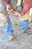 Male farrier. Male farrier working on a horseshoe on a ranch Royalty Free Stock Photography