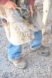 Male farrier. Male farrier working on a horseshoe on a ranch Royalty Free Stock Images