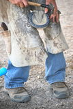 Male farrier. Male farrier working on a horseshoe inside a stable Royalty Free Stock Photography