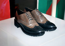 Male fashion shoes Royalty Free Stock Photos