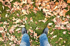 Male feet in blue jeans and black shoes in autumn park Royalty Free Stock Photography