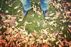 Male feet in blue jeans and black shoes on green grass. Male feet in blue jeans and black shoes standing on green park grass with autumnal leaves, warm tonal Royalty Free Stock Images
