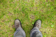 Male feet in leather shoes on grass Royalty Free Stock Image