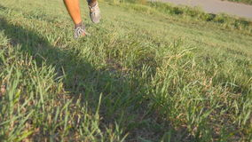 Male feet running over green hill. Legs of athlete is jogging in nature at sunset. Sports runner jogging uphill outdoor. Meadow with green grass. Cross-country stock footage