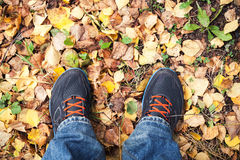 Male feet in sport shoes standing on falling leaves Stock Images