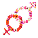 Male female. Symbol; made from colorful flowers Royalty Free Stock Images