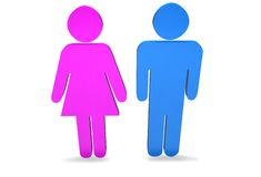 Male and female. Pink and blue male and female figures Vector Illustration