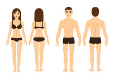 Male and female body. Front and back.  vector illustration Royalty Free Stock Image