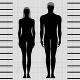 Male and female body templates Royalty Free Stock Images
