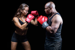 Male and female boxer with fighting stance. Against black background royalty free stock images