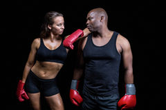 Male and female boxer looking at each other. While standing against black bcakground stock image