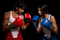 Male and Female Boxers Royalty Free Stock Image