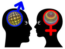 Male and Female Brains are different Stock Image
