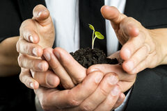 Male and female business partners nurturing a new plant united t Royalty Free Stock Images