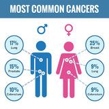 Male and female cancer infographics Royalty Free Stock Image