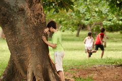 Male and female children playing hide and seek. Young boys and girls playing hide and seek in park, with kid counting leaning on tree Stock Image