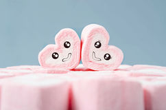 Male and female Cute heart shape marshmallows. Male and female Cute heart shape marshmallows on heap of pink marshmallows royalty free stock photos