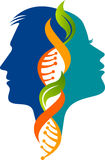 Male and female DNA logo. Illustration art of a Male and female DNA logo with isolated background Stock Images