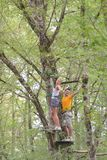 Male and female friends training in tree tops. Male and female friends training in the tree tops stock image
